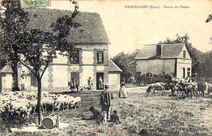 Grand-Camp - Ferme du Plessis