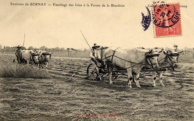 St-Clair-d'Arcey - Ferme de la Blardière