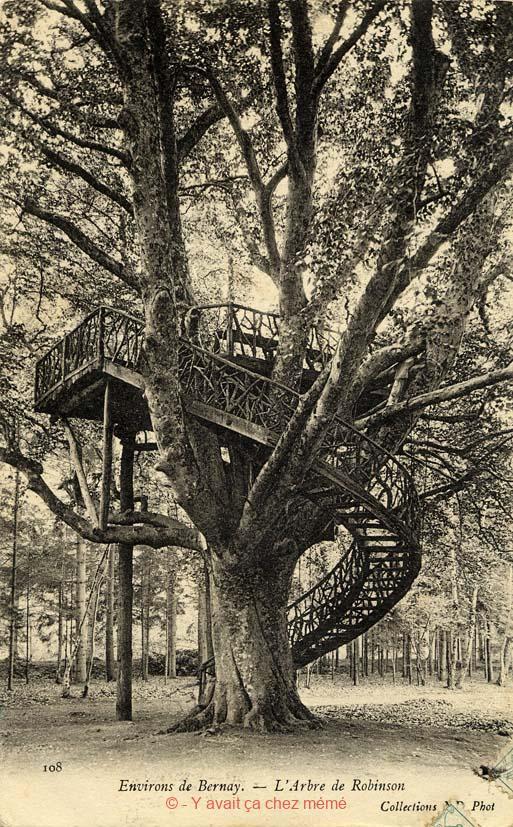 St-Léger-de-Rostes - L'arbre de Robinson