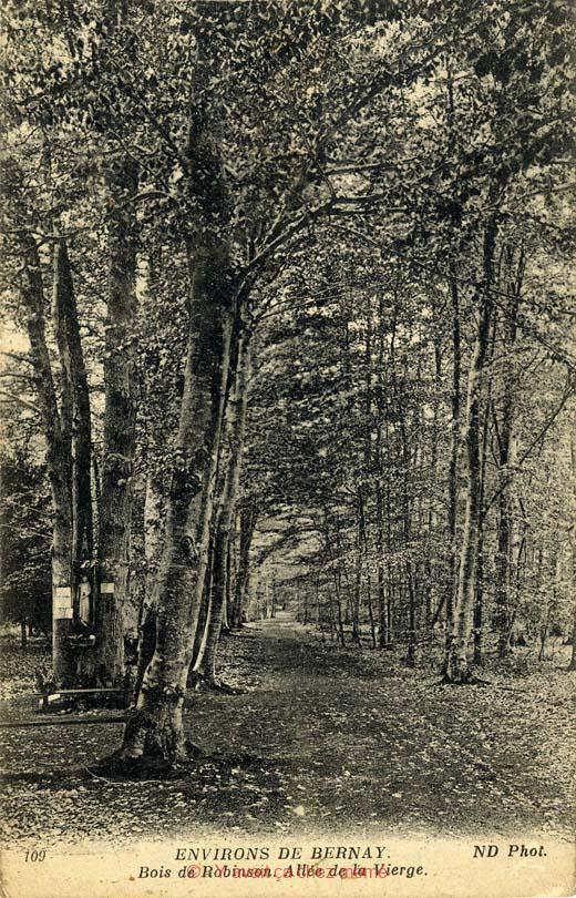 St-Léger-de-Rostes - Bois de Robinson
