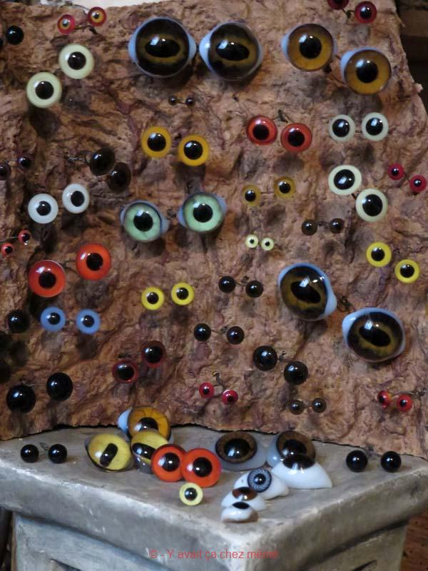 Cabinet de curiosités - Yeux pour taxidermiste