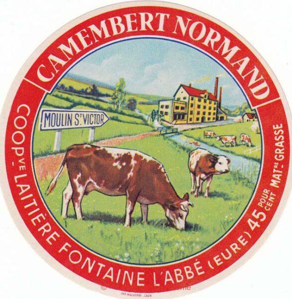Camembert - Coopérative Laitière (Fontaine-l'Abbé)