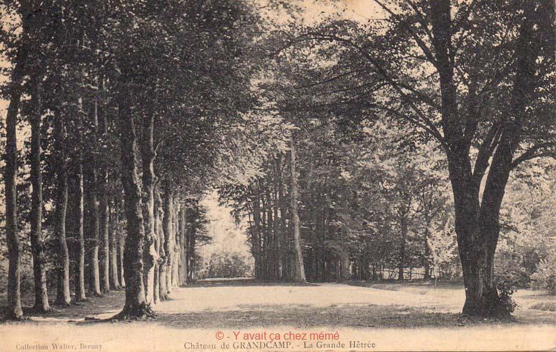 Grand-Camp - Château - La Grande Hêtraie