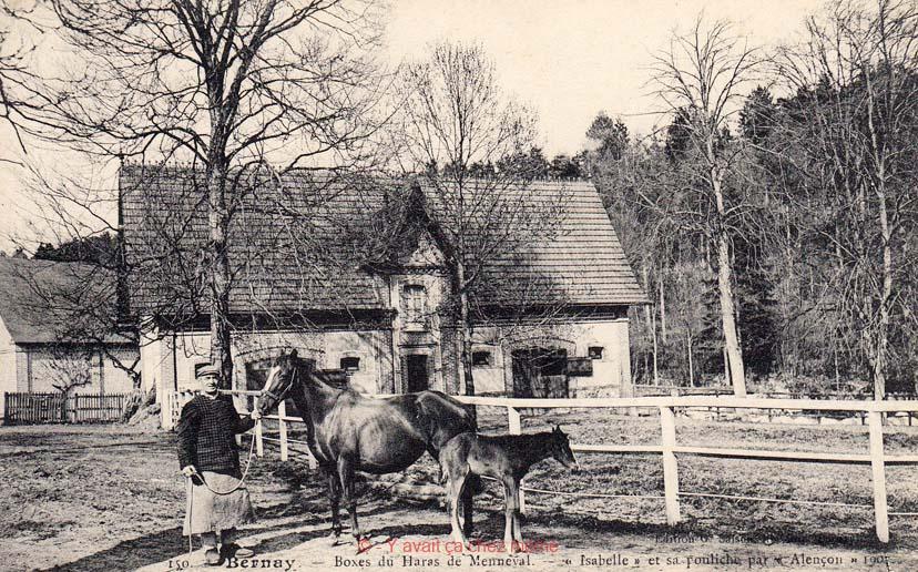 Haras de Menneval 1907 - Isabelle et sa pouliche par Alençon